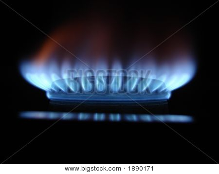 Blue flames of gas stove in the dark poster
