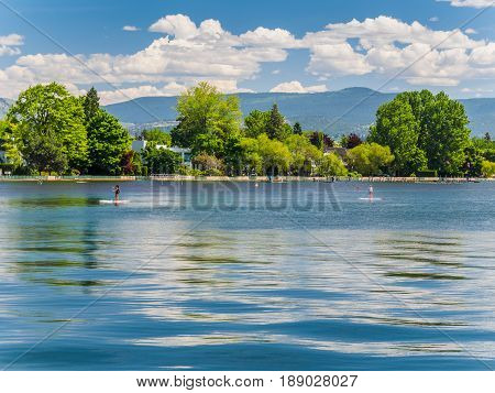 Two paddleboarders cruising along the lake beach