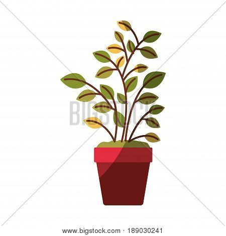 colorful graphic of plant pot without contour and half shadow vector illustration