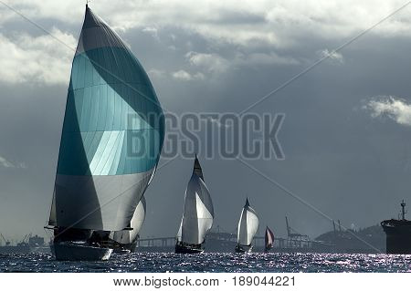 Sailboat racing in Puget Sound in Seattle, Washington