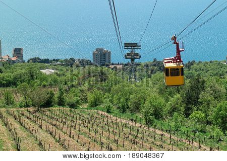 Cable car to Ai-Petri mountain view from the rising funicular at the young vineyards and descending yellow cabin
