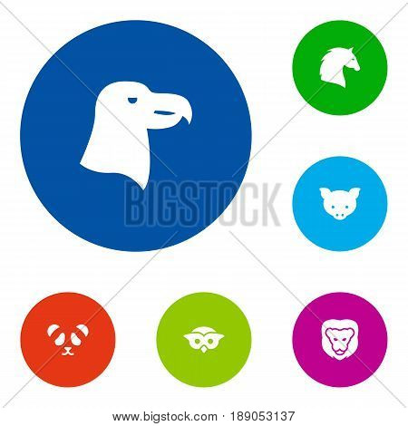 Set Of 6 Zoology Icons Set.Collection Of Wildcat, Hog, Bear And Other Elements.
