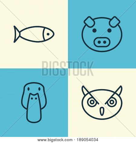 Zoology Icons Set. Collection Of Piglet, Fish, Duck And Other Elements. Also Includes Symbols Such As Owl, Fowl, Piglet.