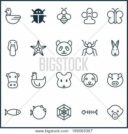 Nature Icons Set. Collection Of Duck, Moth, Cobweb And Other Elements. Also Includes Symbols Such As Chimpanzee, Hare, Fish.