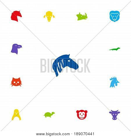 Set Of 13 Zoo Icons Set.Collection Of Wildcat, Horse, Rooster And Other Elements.