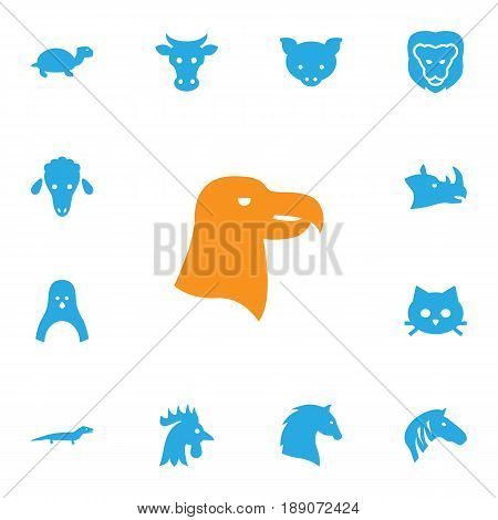 Set Of 13 Zoology Icons Set.Collection Of Aquila, Steed, Lamb And Other Elements.