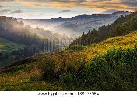 Foggy Hillside In Rural Area