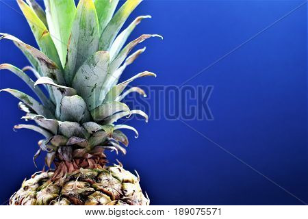 An image of a pineapple - ananas, food