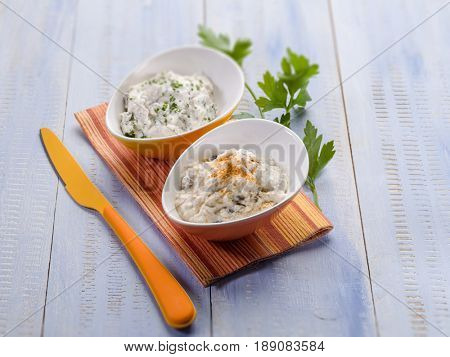 tzatziki traditional greek appetizer, selective focus