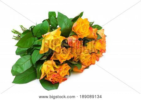 Beautiful bouquet of roses isolated on white background. Horizontal photo.