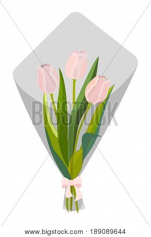 Bouquet of three pink tulips in a gift wrapper with a bow, isolated on white background, vector illustration
