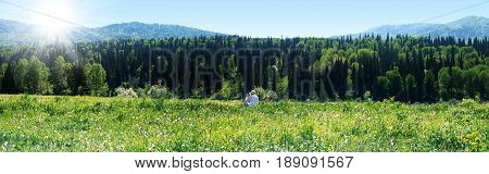 Nature of east kazakhstan. Coniferous forest green meadow with flowers mountains blue sky. Idyllic summer panorama. Man shooting.