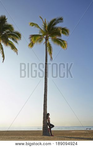 Pacific Islander woman leaning on palm tree