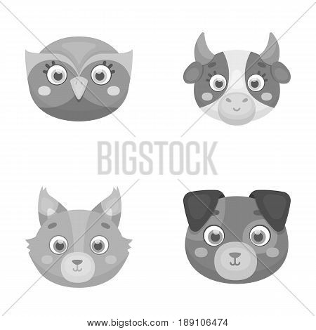 Owl, cow, wolf, dog. Animal s muzzle set collection icons in monochrome style vector symbol stock illustration .