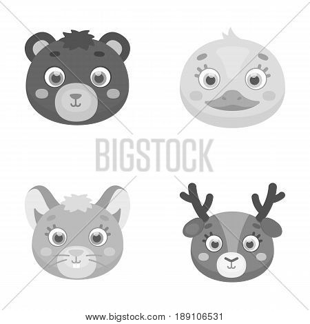 Bear, duck, mouse, deer. Animal s muzzle set collection icons in monochrome style vector symbol stock illustration .