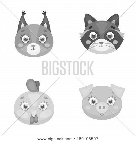 Protein, raccoon, chicken, pig. Animal s muzzle set collection icons in monochrome style vector symbol stock illustration .
