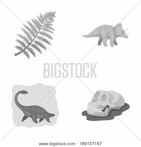 Sea dinosaur, triceratops, prehistoric plant, human skull. Dinosaur and prehistoric period set collection icons in monochrome style vector symbol stock illustration .
