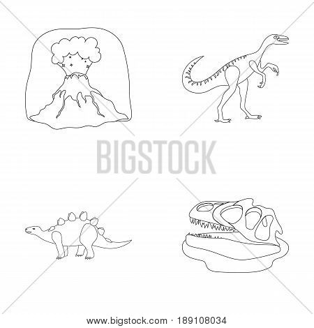 Volcanic eruption, gallimimus, stegosaurus, dinosaur skull. Dinosaur and prehistoric period set collection icons in outline style vector symbol stock illustration .