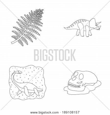 Sea dinosaur, triceratops, prehistoric plant, human skull. Dinosaur and prehistoric period set collection icons in outline style vector symbol stock illustration .