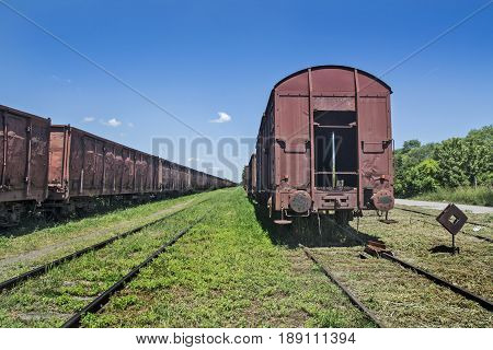 Old railway wagons waiting to be turned into scrap iron.