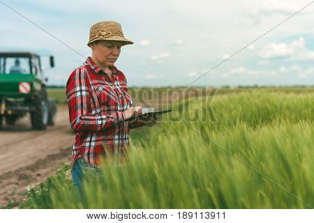 Smart farming using modern technology in agricultural activity female farmer agronomist with digital tablet computer using mobile app in wheat crops field tractor with crop sprayer in background
