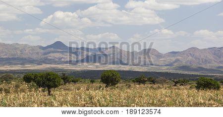 African landscape near Konso. Omo Valley. Ethiopia.