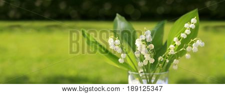 Lilly of the valley flowers in glas vase isolated on green background.