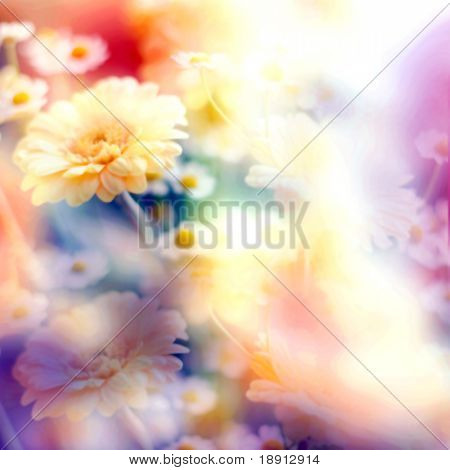 abstract floral pastel toned backgound with camomiles poster