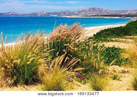 Coastline and beach in Cabo San Lucas Mexico