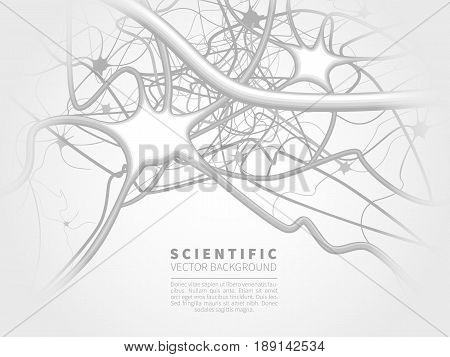 A model of neural system.Scientific vector background for projects on technology, medicine, chemistry, science and education.