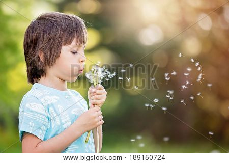 Child Having Fun, Blowing Dandelions