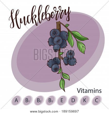 Vector fruit element of huckleberry. Hand drawn icon with lettering. Food illustration for cafe, market, menu design