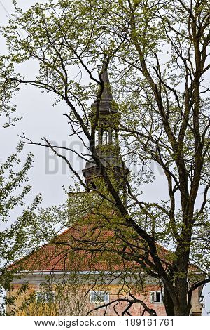 View of the tower of the Narva Town Hall against the sky through the branches of a tree.