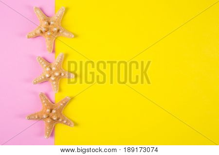 Three Starfishes On Colored Pink And Yellow Backgrounds With Negative Space, Top View