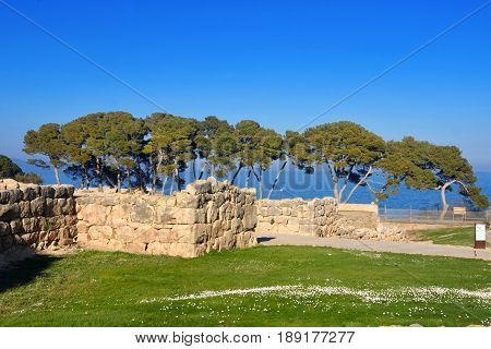 Spring in the Greek city of Empuries Costa Brava Girona province Catalonia Spain