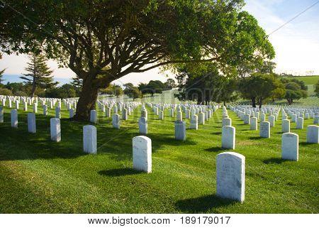 SAN BRUNO, CALIFORNIA, USA - October 27, 2009: Rows of headstones at the San Francisco National Cemetery