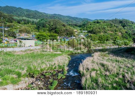 Small stream in South Korea running through a meadow of tall grass with a small village in the distance.