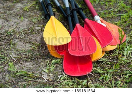 Kayak Oars And Paddles On The River Bank