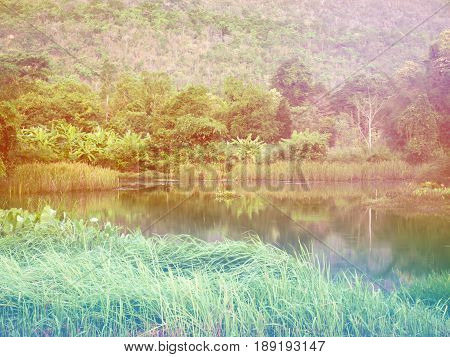 View Of Lake With Green Tree And Mountian Behind