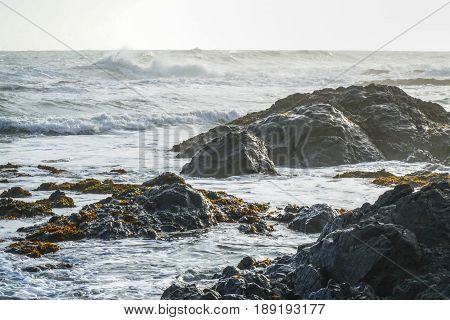 The wild and rocky coast of Shelter Cove - SHELTER COVE - CALIFORNIA