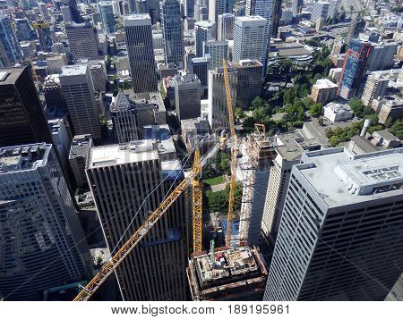Large cranes and surrounding towers in Seattle Washington.
