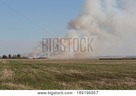 smoke from burning stubble on a farm field