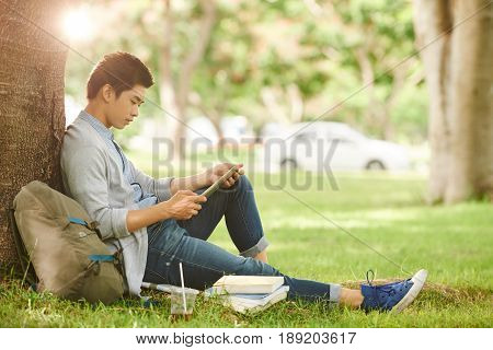 Profile view of confident Asian student sitting under tree and working on school project with help of digital tablet, lens flare