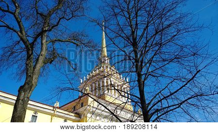The Admiralty tower through the branches of a tree against the clear blue sky in Saint-Petersburg, Russia