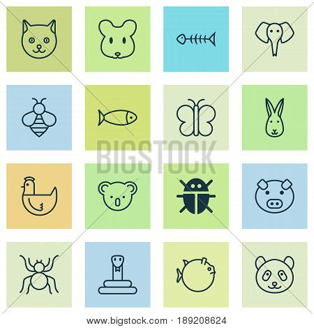 Nature Icons Set. Collection Of Rat, Kitten, Serpent And Other Elements. Also Includes Symbols Such As Elephant, Pussy, Mouse.