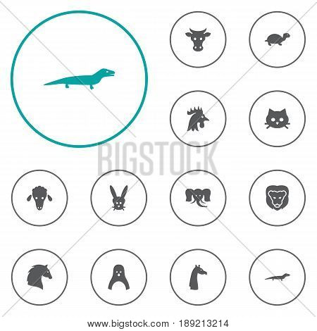 Set Of 12 Zoo Icons Set.Collection Of Bunny, Lamb, Diver And Other Elements.