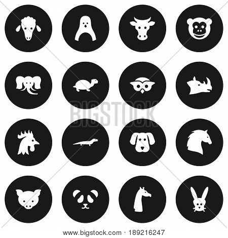 Set Of 16 Animal Icons Set.Collection Of Steed, Hog, Kine And Other Elements.
