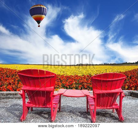 The concept of recreation and eco-tourism. Two joined red plastic chairs next to fields of garden buttercups. The multi-color balloon flying in the sky