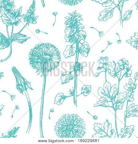 Hand drawn vector seamless pattern with wildflowers. Decorative floral illustration. Sketch style. Us for skrapbuking, tissue, textile, cloth, fabric, web material