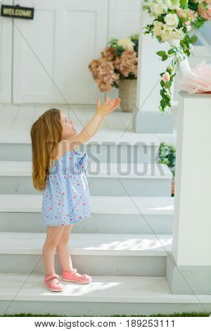 A little girl in a blue dress came down from the porch and stretched her palms to the sky praying for her dreams